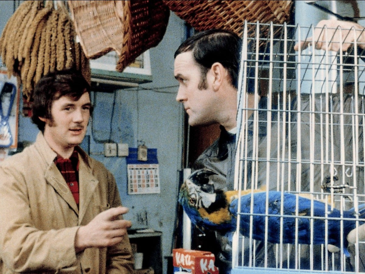 Monty Python at 50: a half-century of silly walks, edible props and dead  parrots | Television & radio | The Guardian