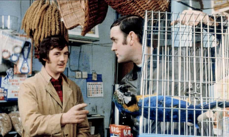 It's not dead, it's pining for the fjords! … John Cleese returns his Norwegian Blue parrot.