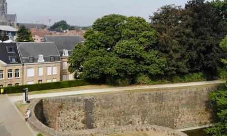 Ypres chestnut tree battered but unbowed by wars wins Belgian award