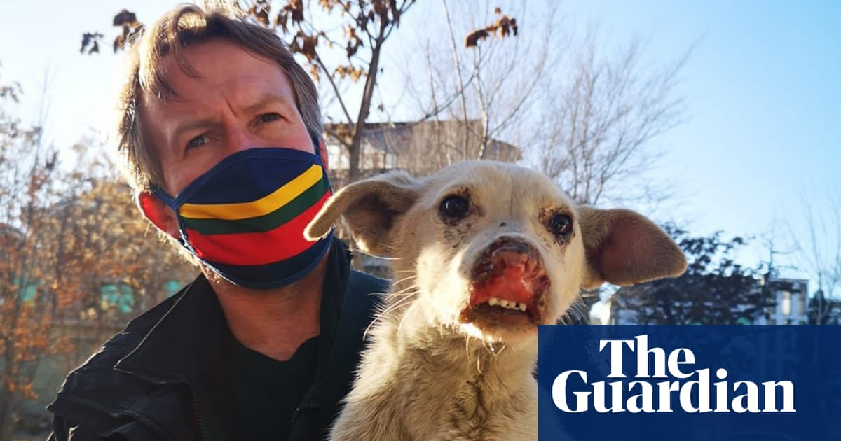 Fresh hope for ex-marine's efforts to rescue 200 cats and dogs from Kabul
