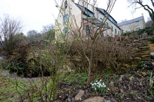 Very early January snowdrops at Ruskin Mill College in Nailsworth, England