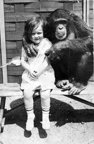 Ruth with the chimp at London Zoo … 'I think I was four or five, so 1937 or 1938.'