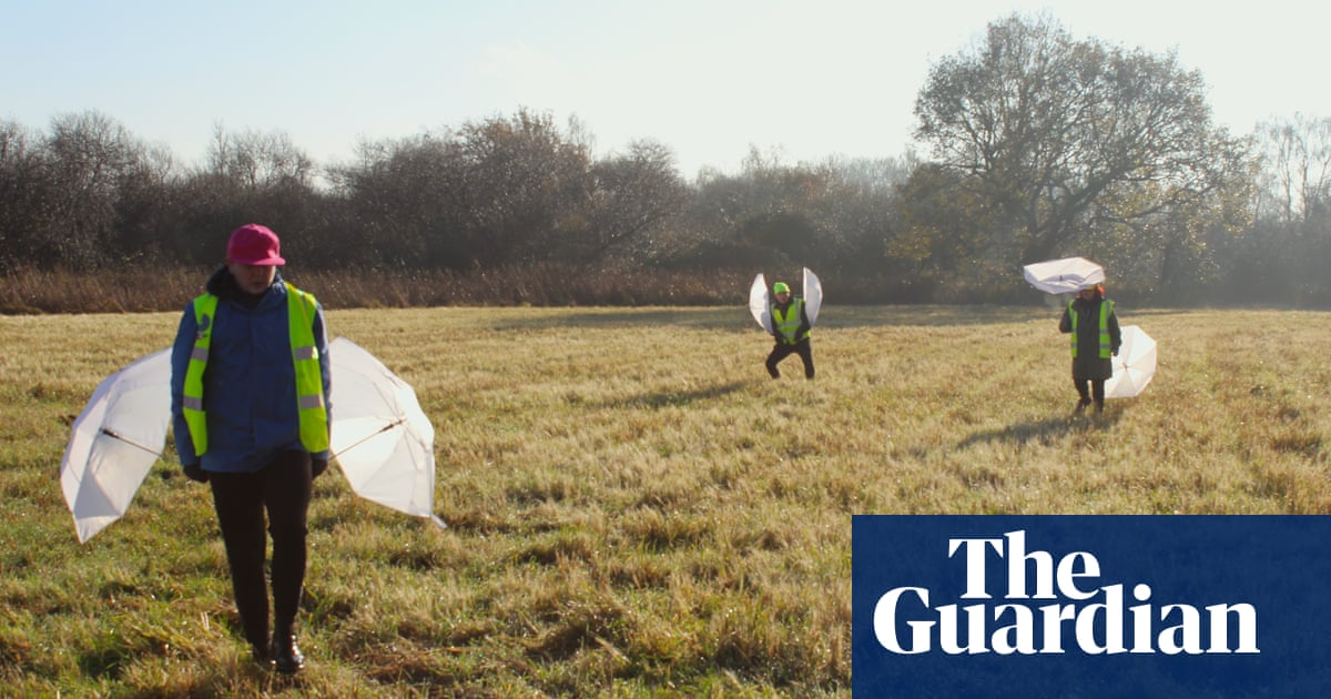 Exit pursued by a marsh harrier: why I wrote a play for nature reserves