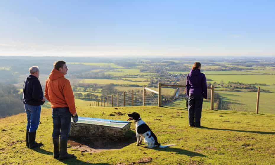 People with dog looking at a view