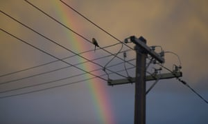 A Nov. 29, 2015 file photo of a bird sitting on electricity wires as a rainbow is seen in the background in Canberra.