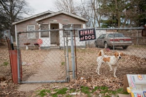 A dog stands in front of a home on December 21 in Kennett, Missouri. The city has been without a hospital since the closing of Twin Rivers Regional Medical Center in 2018. Photograph: Brandon Dill for The Guardian