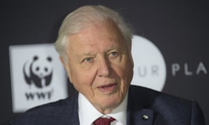 David Attenborough describes his latest film as a 'witness statement' of the effects of climate change.