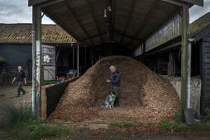 The trees are turned into woodchip to heat Wolfe's farm and research centre.