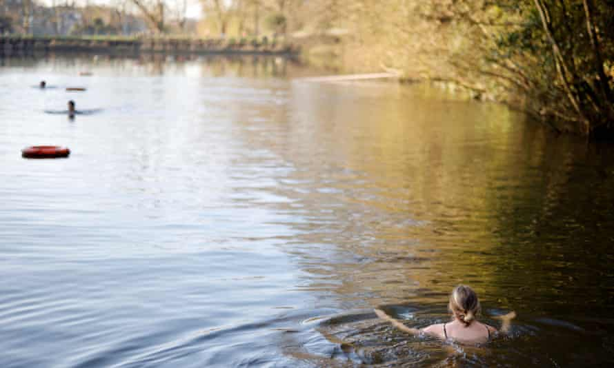 A swimmer paddles in the water at the Hampstead Heath ponds