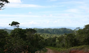 The mountain half of the Natoavatu Estate in Fiji is mostly impenetrable jungle and is not used for cultivation.