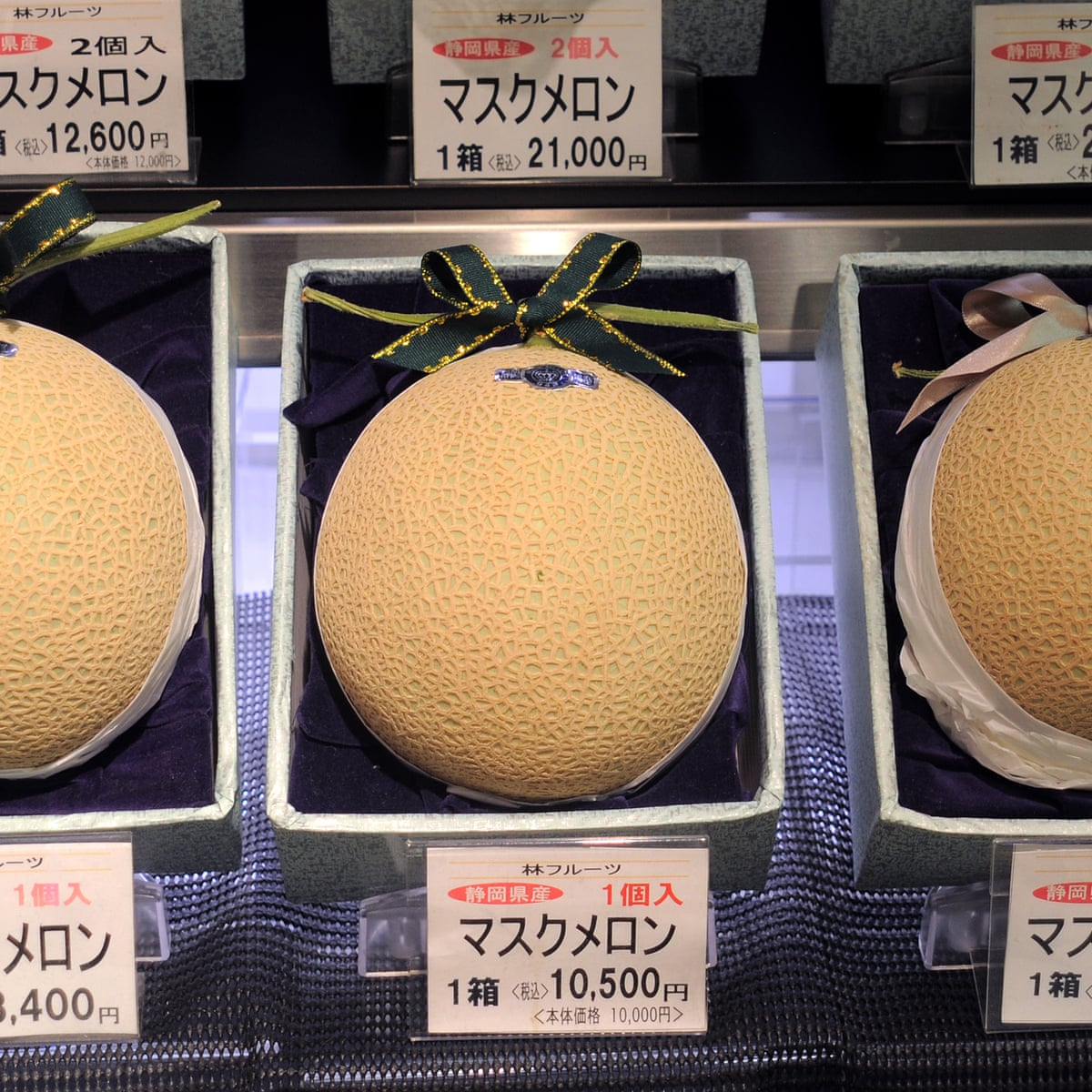 200 Melons How Japan S High End Fruit Reveals Our Attitudes To Agriculture Adam Liaw Food The Guardian Alaskan king crab, tinctured cantaloupe, avocado pureé, cilantro brown butter by chef chris alaskan king crab: 200 melons how japan s high end fruit