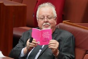 Senator Barry O'Sullivan reading Sarah Hanson-Young's book during Senate question time