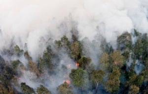 A fire burns in the Leuser Ecosystem, Sumatra