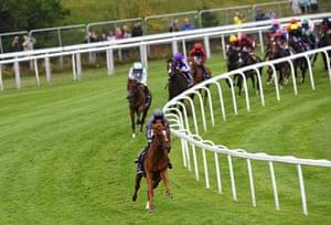 Jockey Emmet McNamara rides Serpentine into a clear lead around Tattenham Corner on their way to victory in the Derby.