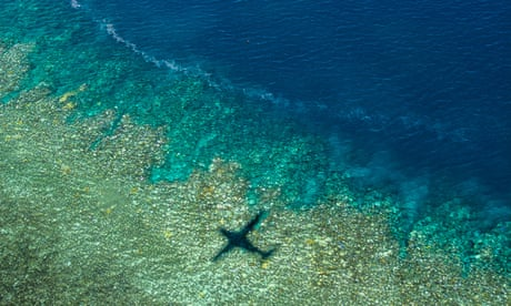 Great Barrier Reef coral at risk of bleaching from Queensland flood waters