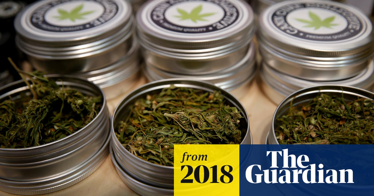 Legalising cannabis could be 'win-win-win' for UK, says thinktank