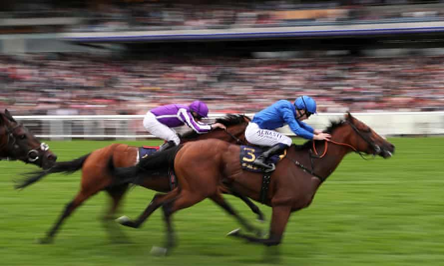 King george stakes betting on sports napoli palermo betting tips