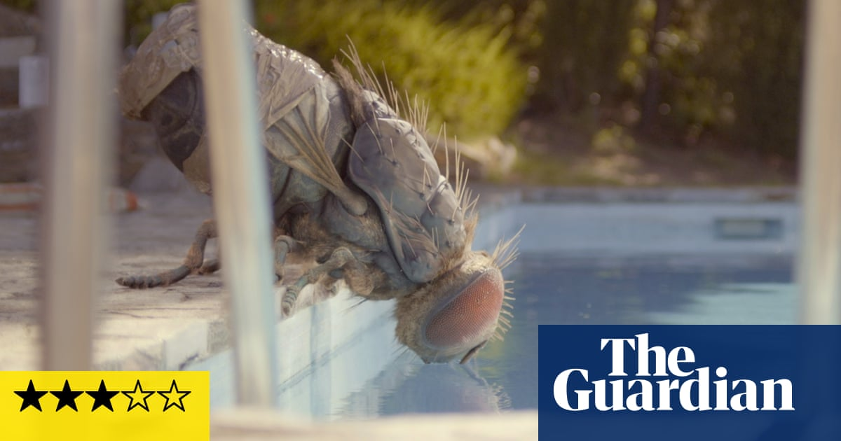 Mandibles review – bizarre giant-fly comedy runs out of sugar