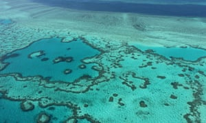 The Carmichael mine and port project threatens the Great Barrier Reef, say environmentalists.