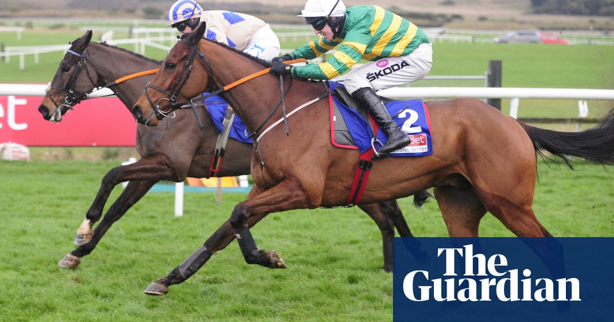 Andy Dufresne advertises Cheltenham Festival claims at Punchestown