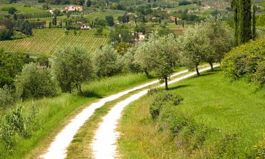 The winding road ... Tuscany, where Jan, the narrator, arrives in the summer of 1983.