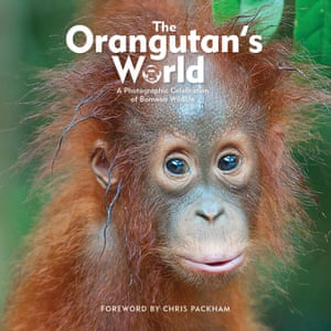 The Orangutan's World – a photographic celebration of Bornean wildlife.
