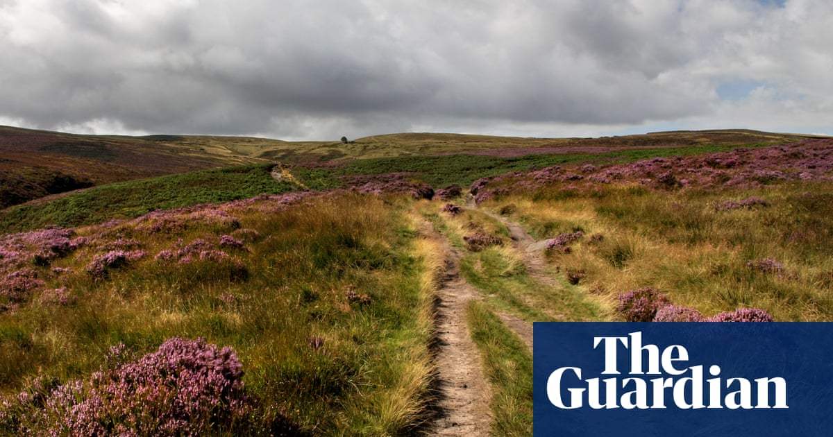 'My blood stirred, my mind fizzed': Emma Rice on Wuthering Heights