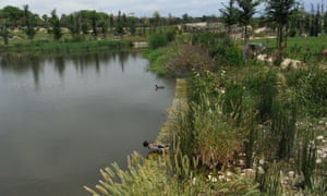 Since it opened in 2015, around 90 species of birds have been spotted in the park, while larvae-eating fish keep the mosquito population down.