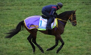 The 2014 Melbourne Cup favourite Admire Rakti died in his stalls after the race.