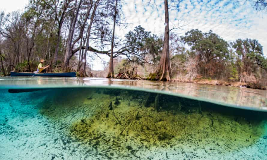 Florida'daki Ginnie Springs.