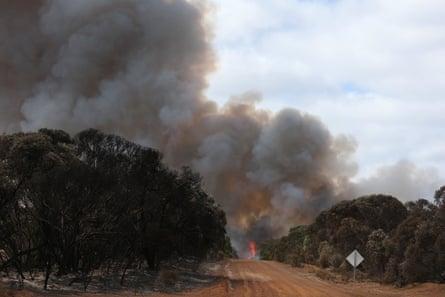 Kangaroo Island fire
