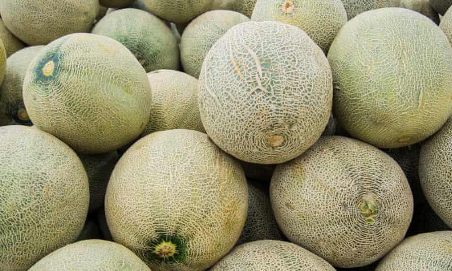 Melons at market