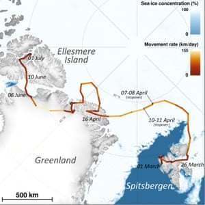 The route of an arctic fox over 3,506km (2,178 miles), from Svalbard in Norway to Ellesmere Island in Canada.