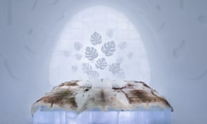 An interior shot of Monstera suite in the Ice Hotel