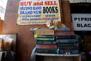 Manila, Philippines. A cat sits on top of a pile of second-hand medical books for sale in the University Belt