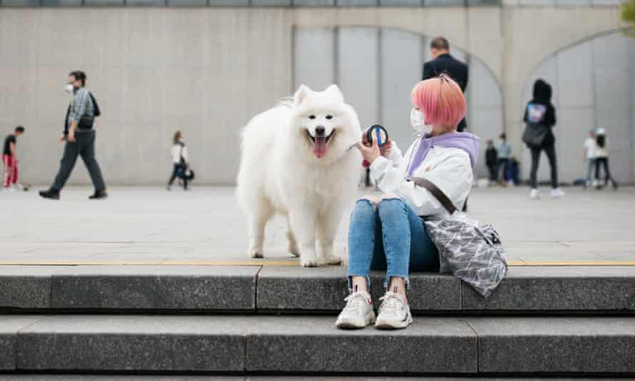 Reports of a curb on dog walking in Yunnan province has drawn thousands of comments on social media.