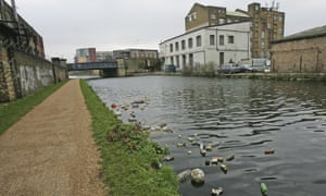 'Only 14% of England's rivers reach good ecological standards': the River Lea in Stratford, east London