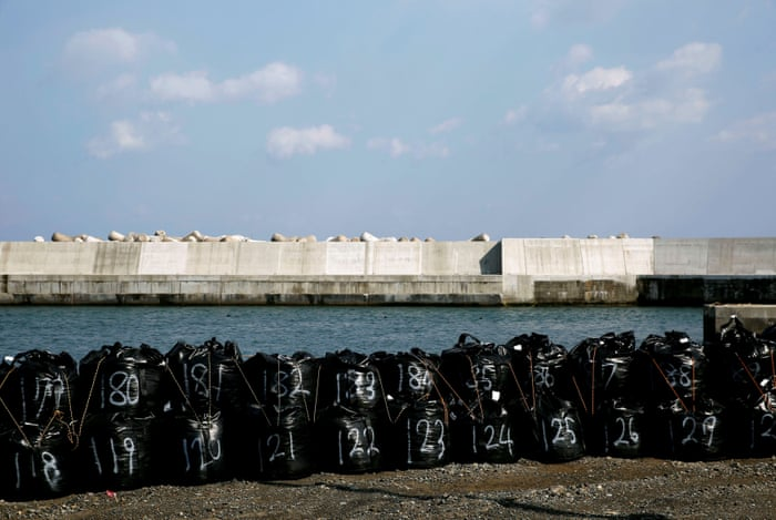 After the tsunami: Japan's sea walls – in pictures   World