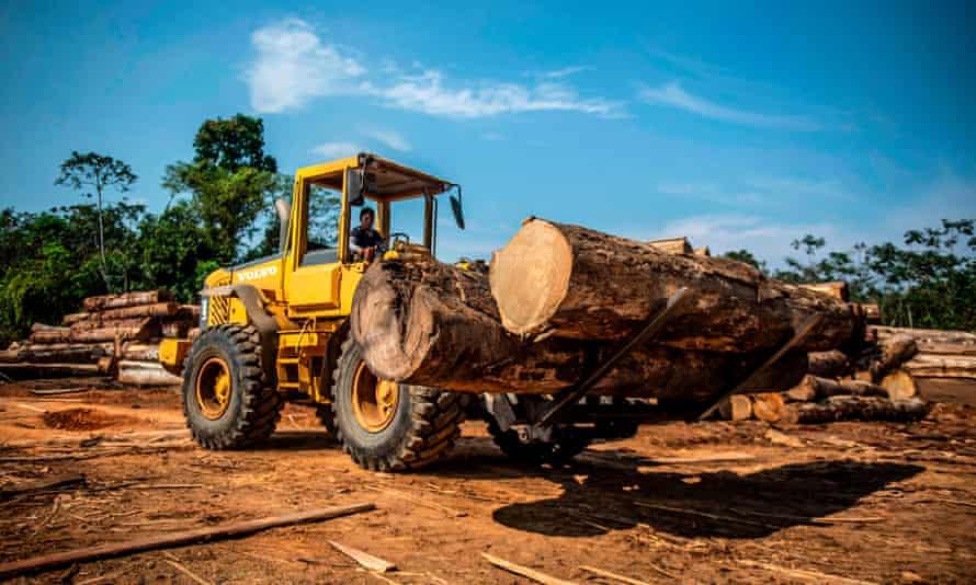 A sawmill in Peru's Madre de Dios region of the Amazon rainforest.