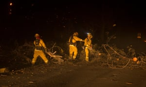 Firefighters clear a fallen tree from a roadway after it just hit a passing car during the Camp fire, as it burned out of control through Paradise.