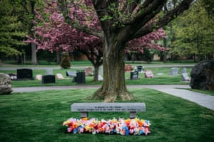 In Woodvale cemetery, a bench dedicated to the families who lost their eggs and embryos.