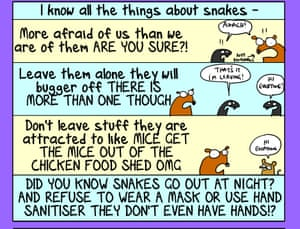 First Dog on ... snakes!