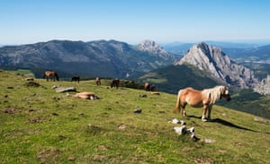 Wild horses in the mountains of Urkiola national park, Basque Country, Spain