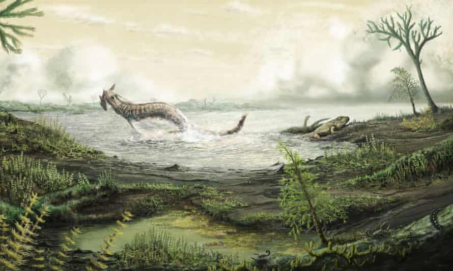 Palaeoart of the environment where tetrapods first crawled onto land over 350m yrs ago.