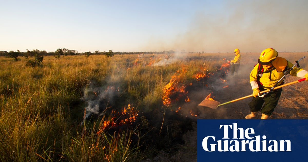 'It still gives me nightmares': the firefighters on the frontline as the world burns