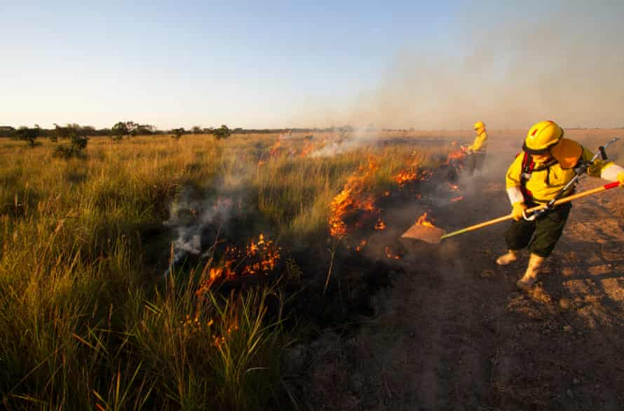 firefighters trying to beat out fires in Bolivia's grasslands.