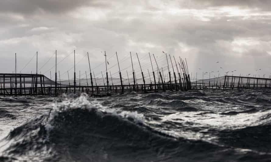 Salmon pens in Storm Bay in Tasmania