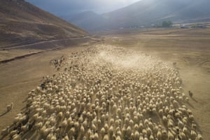 A drone photo shows a flock of sheep on their way back to the warmer places in the Catak district of Turkey's southeastern province Van.