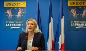 Marine Le Pen, Front National leader
