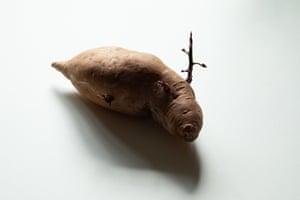 Potato Slug: 'I like the fact that this spud looks like a cross between a seal and a unicorn.' Martin Parr